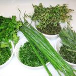 Ενδεικτικά Αρωματικά φυτά